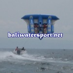 flying-fish-tanjung-benoa