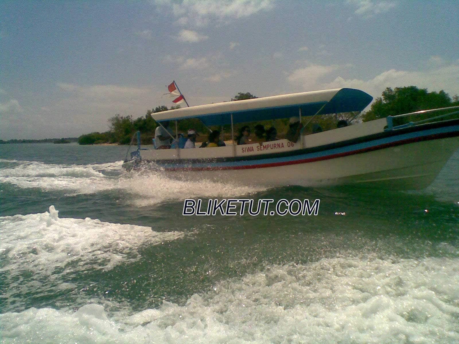 Wisata Pulau Penyu (Glass Bottom Boat + Turtle Island)