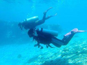 diving menjangan
