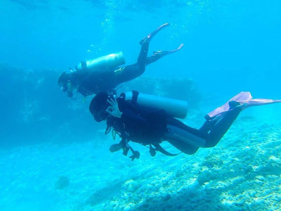 diving menjangan