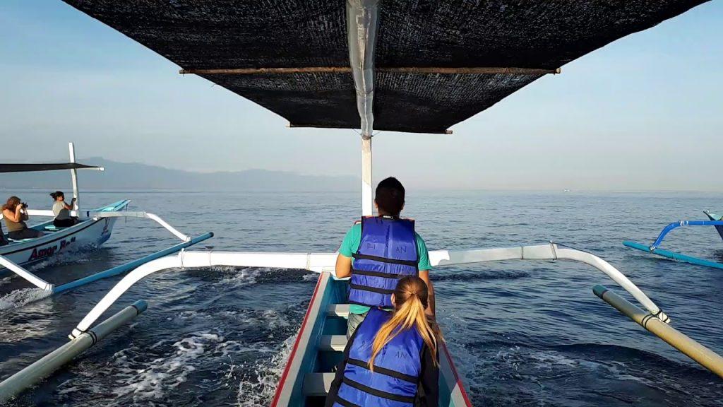 Perahu untuk melihat lumba lumba di lovina